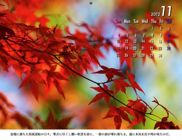 11_20120209221611.jpg