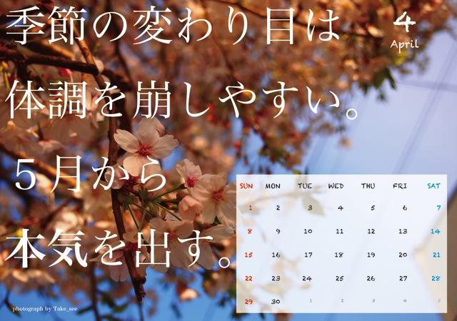本気出す(4月)