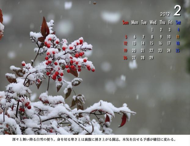 2_20120209221644.jpg