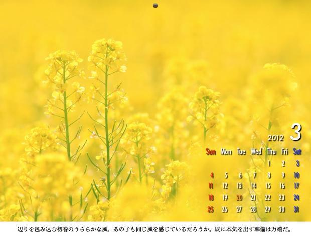 3_20120209221645.jpg