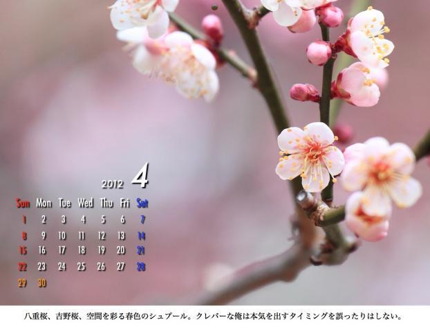 4_20120209221646.jpg