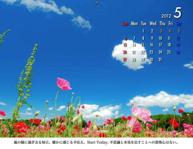 5_20120209221647.jpg