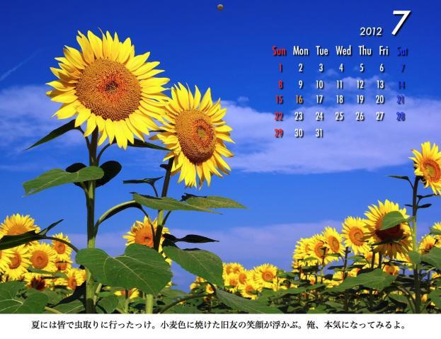 7_20120209221608.jpg