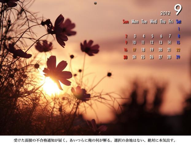 9_20120209221609.jpg