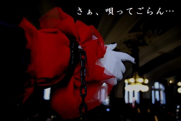 00_20101214213813.jpg