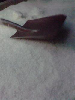 P1020076_convert_20111101222105.jpg