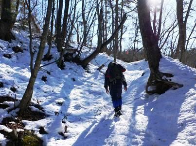 表紙 雪原歩く