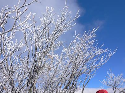 樹氷と帽子