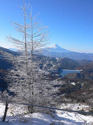 202日目富士山2枚目
