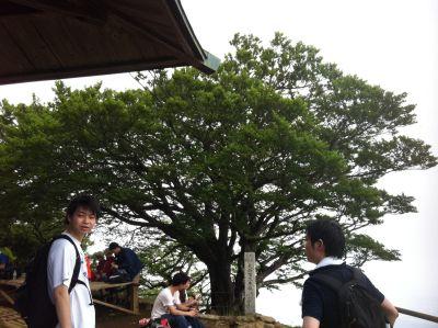 6月の大山3