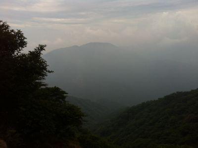 7月の大山5