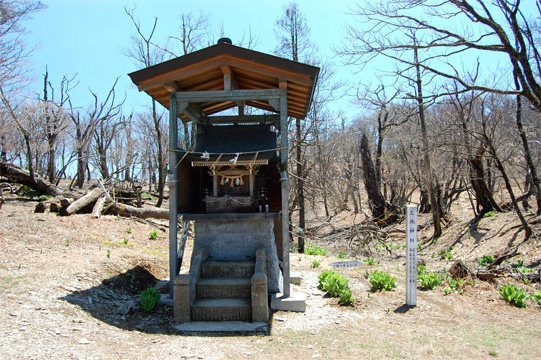 現在の三池神社