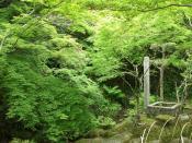 佐賀キャンプ2日目09