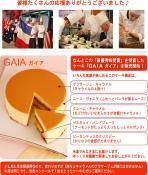 gaia-top-2.jpg