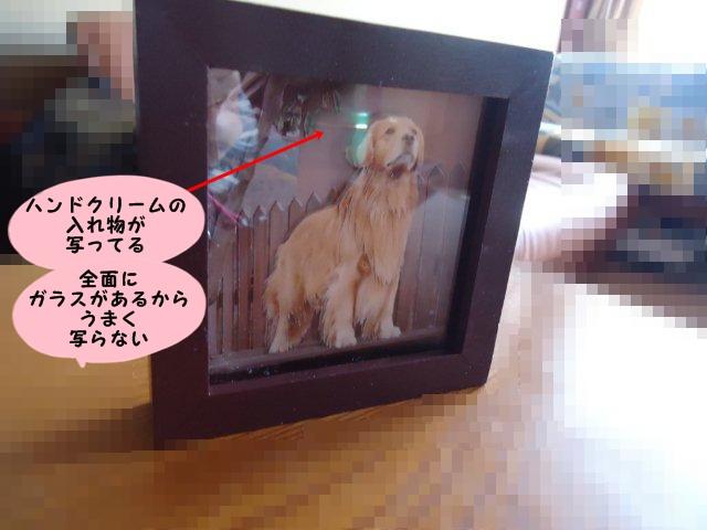 002_20111130141237.jpg