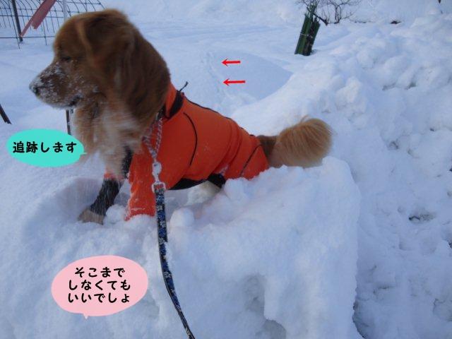 002_20111231165440.jpg