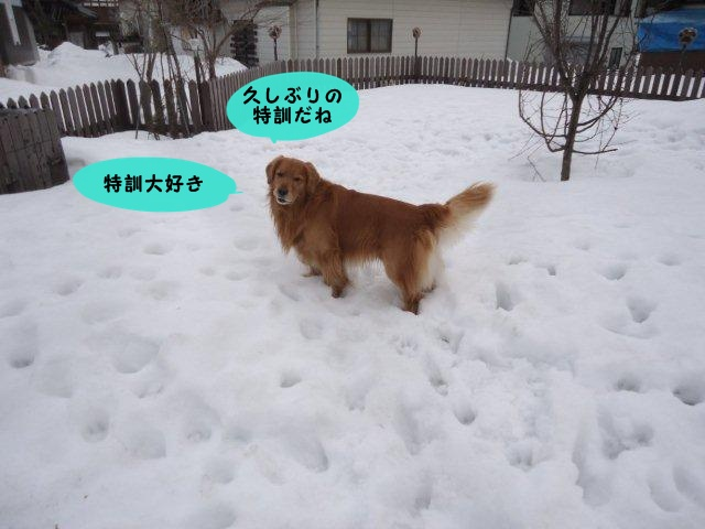 002_20120310110157.jpg