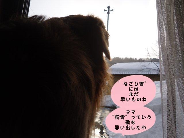 003_20120227173202.jpg