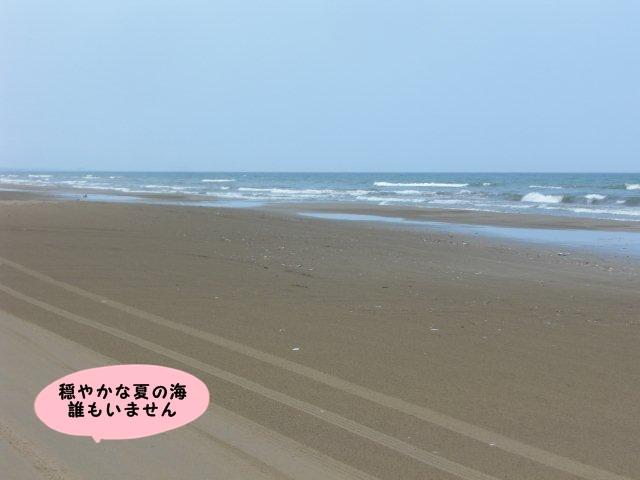 004_20110630160257.jpg