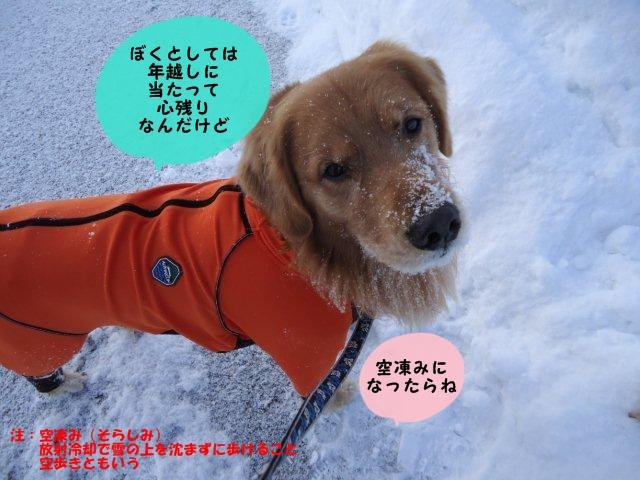 004_20111231165456.jpg