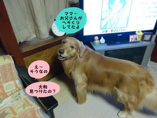 005_20120303183413.jpg
