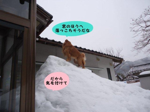 006_20120229205719.jpg