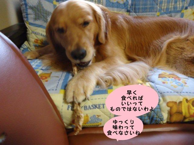 009_20110930162757.jpg