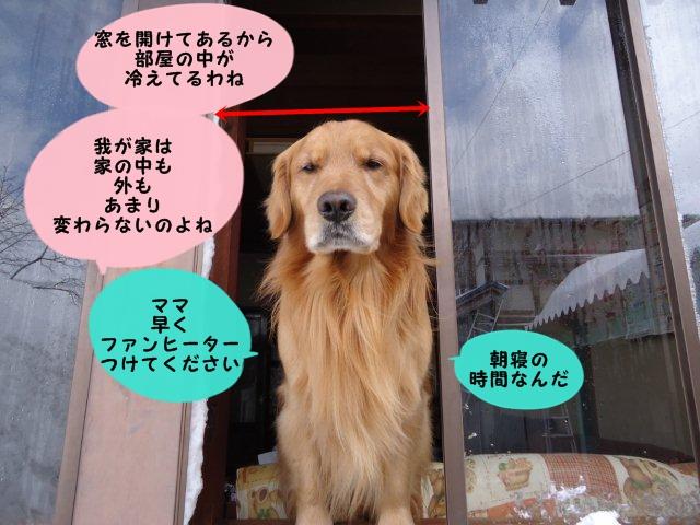 009_20120218103706.jpg