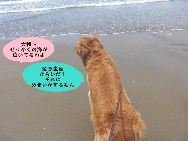 010_20110630160403.jpg