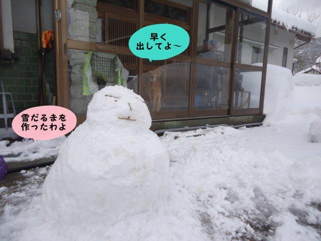 020_20120131152545.jpg
