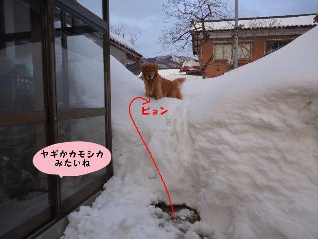 020_20120220200011.jpg