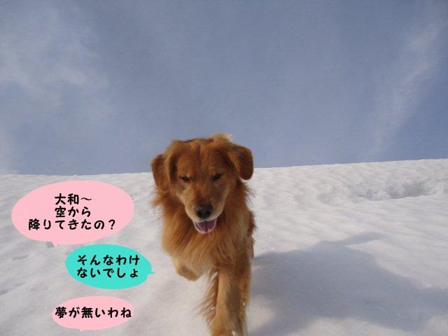058_20120308103044.jpg