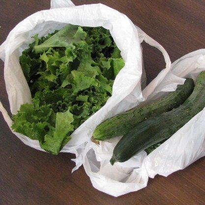 IMG_0303 頂いた野菜
