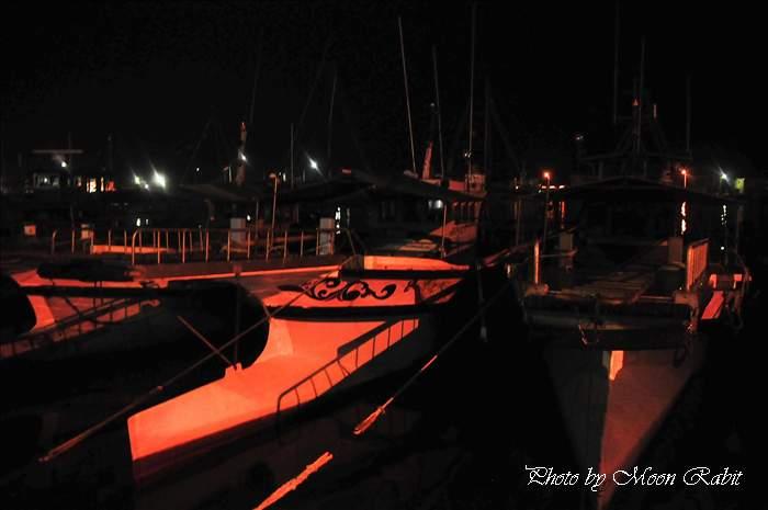 今治港内港の夜景 愛媛県今治市 2009年8月1日