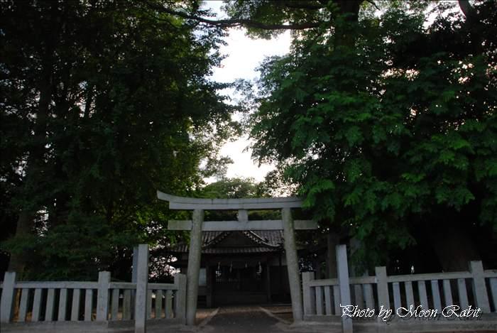 新川 柳森神社・東予のお椿さん・柳のお天皇さん 愛媛県西条市明理川79 2010年8月5日