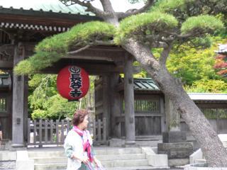 鎌倉_長谷寺1