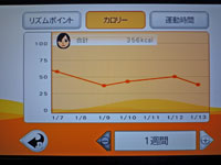 Fitness Party 1月13日カロリー 合計 356kcal