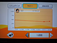 Fitness Party 2011年2月2日カロリー 合計 978kcal