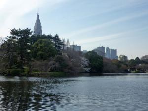 日本庭園内池