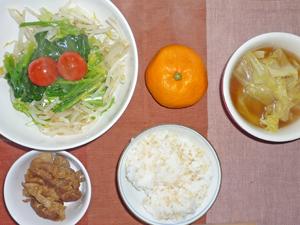 ご飯,豚肉のしぐれ煮,サラダ,キャベツのスープ,ミカン