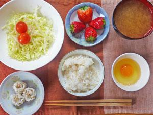 玉子かけご飯,シュウマイ,サラダ,みそ汁,イチゴ