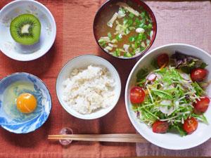 玉子かけご飯,サラダ,みそ汁,肉まん,キウイフルーツ