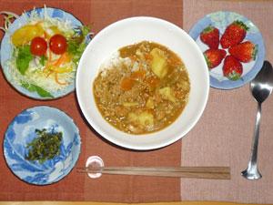 カレーライス,サラダ,紫蘇の実,イチゴ