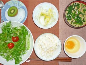 玉子かけご飯,サラダ,白菜の漬物,納豆汁,キウイフルーツ