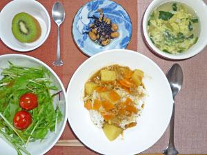 カレーライス,サラダ,ひじきの煮豆,玉子スープ,キウイフルーツ