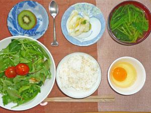 玉子かけご飯,サラダ,白菜の漬物,ほうれん草のみそ汁,キウイフルーツ,チョコレート
