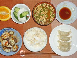 ご飯,餃子,もやしとナスのオーブン焼き,キュウリとカブの漬物,納豆汁,オレンジ
