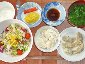 ご飯,餃子,サラダ,カニカマ,プチオムレツ,ほうれん草のみそ汁,ヨーグルト