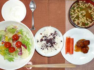 ゆかりご飯,サラダ,カニカマ,肉団子,納豆汁,ヨーグルト