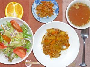 カレーライス,サラダ,キンピラゴボウ,オニオンスープ,オレンジ